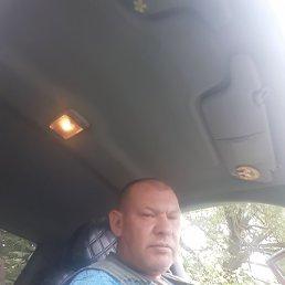 Дима, 43 года, Егорьевск