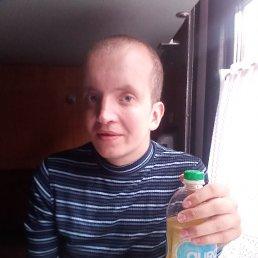 Павел, 28 лет, Брест