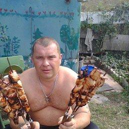Сергей, 41 год, Ливны