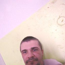 Адам, 37 лет, Санкт-Петербург