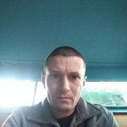 Павел, 38 лет, Новочеркасск