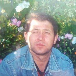 Александр, 53 года, Москва