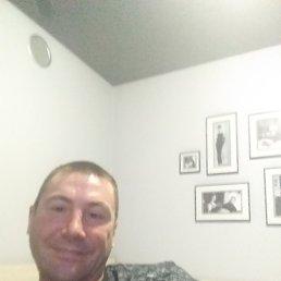 Дима, 41 год, Екатеринбург