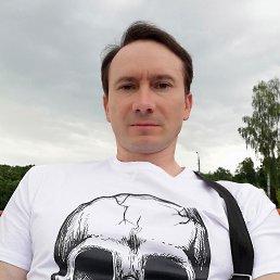 Евгений, 41 год, Тула