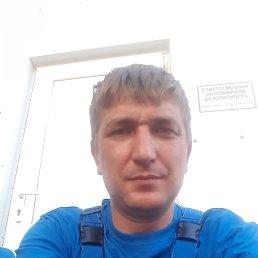 Алексей, 37 лет, Бишкек
