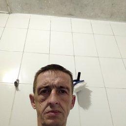 Александр, 43 года, Москва
