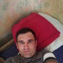 Денис, 33 года, Дзержинский