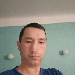 Анатолий, 43 года, Владивосток