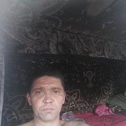 Пётр, 41 год, Пласт