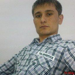 Фируз, 31 год, Жуковский