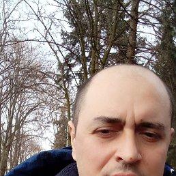 Адам, 42 года, Ставрополь