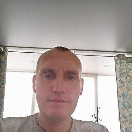Виктор, 50 лет, Воронеж