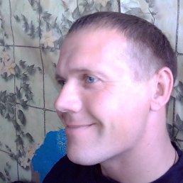 Николай, Барнаул, 35 лет