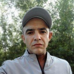 Дима, 36 лет, Екатеринбург