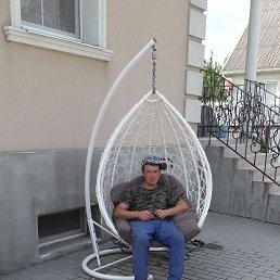 А л и, 32 года, Воронеж